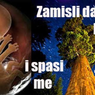 da-sam-drvo