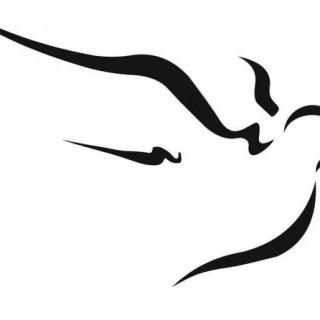 dove-website-logo