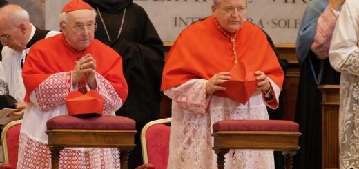 kardinali b i b